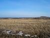 DSC00984 (sergeyudalov) Tags: landscape ландшафт clouds overcast облака springtime spring весна весенняяпора grass трава plants растения trees деревья white белый sky небо blue синий голубой black чёрный arable пашня field поле