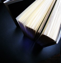 An open book standing on end