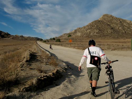 Greenest or Forest Green: Walk or bike