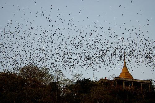 Khao Chong Phran, Ratchaburi, Thailand