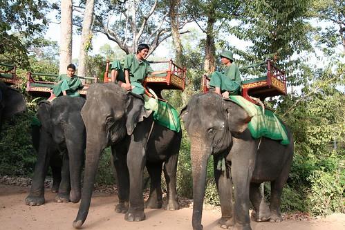 angkor2006_ mshouts