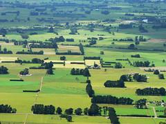 farmland (Brenda Anderson) Tags: newzealand green rural landscape geotagged aerial farmland wairarapa curiouskiwi utataview brendaanderson geo:lat=41006387 geo:lon=175434617 curiouskiwi:posted=2006