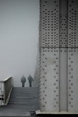 into the fog - by tinou bao