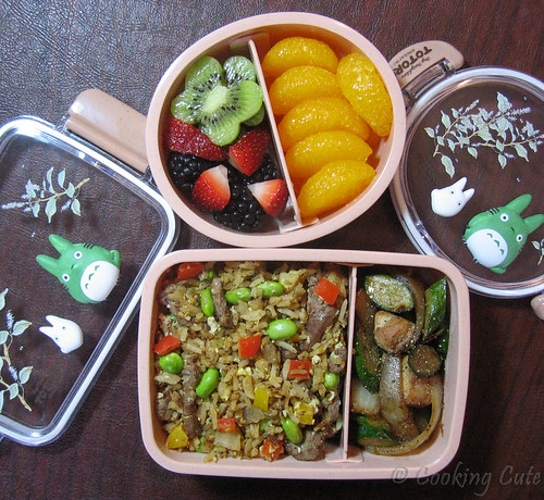 [round totoro bento with fresh fruits, rectangular totoro bento with beef fried rice and chicken and zucchini stir-fry]