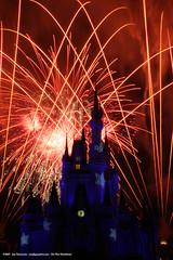 Disney Fireworks 14 (smtpboy) Tags: fireworks disney 30d canon30d canonefs1785mmf456isusm