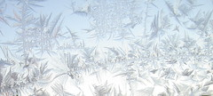 window frost, jkukkia (Anna Amnell) Tags: iceflowers jkukkia