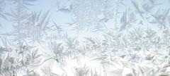 window frost, jääkukkia (Anna Amnell) Tags: iceflowers jääkukkia