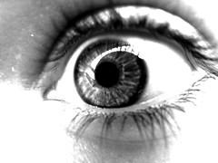 SW (jbvkoos) Tags: eye me makro auge