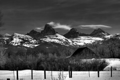 The Four Tetons (James Neeley) Tags: bw white snow black mountains landscape nikon d2x teton tetons hdr bnw 123bw 5xp superaplus aplusphoto