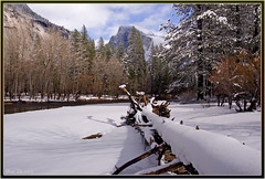 Fallen (Thi) Tags: yosemite halfdome housekeeping mercedriver yosemitewinter
