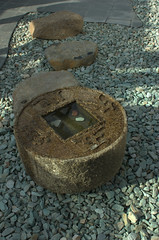 Four-way stone, Bonsai Museum, BBG