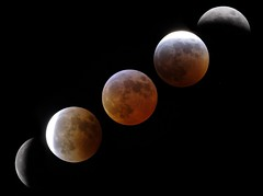 Eclipse Montage (markkilner) Tags: tv60 televue telescope rebelxt moon montage lunareclipse lunar kilner fullmoon eclipse dslr canon astronomy 360mm 350d composite manualfocus apo southeast thesolarsystem broadstairs televue60 thanet