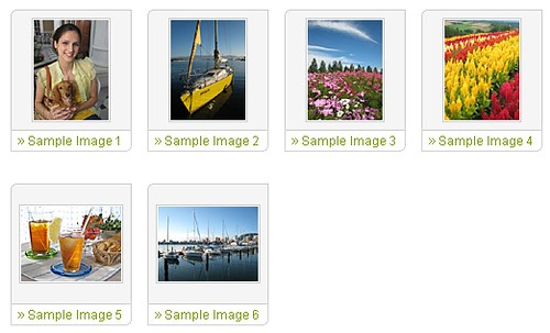 Official Canon Powershot SD800 IS Sample Images