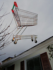 Jonathan Livingston Shopping Cart (Professional Recreationalist) Tags: fly flying shoppingcart brucedean professionalrecreationalist victoriabc jonathanlivingstonseagull thriftyfoods jonathanlivingstonshoppingcart