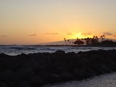 DSC00776 (jeremytheys) Tags: hawaii honeymoon waikikibeach honalulu