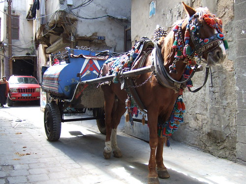 Mazoot truck - old city Damascus