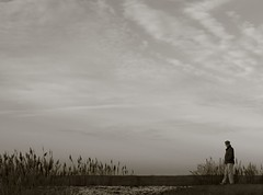 alone beneath the vast sky (mtstradling) Tags: sky bw sepia composition coast newjersey bravo horizon nj shore grasses solitary bivalve cumberlandcounty mtstradling 123nj monochromia 123njpeople shellpile portnorris lessthinkingmoreseeing