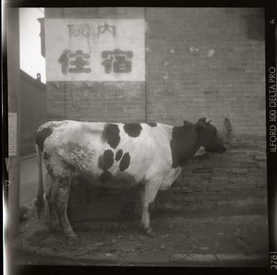 Cornor, Ping Yao, China, 2005