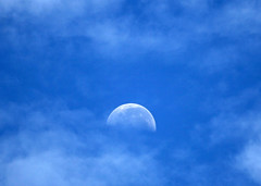 Moonset - the Moon is blue - by mgjefferies
