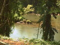 Mahaweli_river (Malka001) Tags: rivers srilanka longest