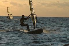 Farina_Tecno293_04279 (marsalasail - Giuseppe Farina) Tags: windsurf marsala marsalasail tecno293