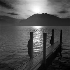Lake Luzern from Weggis - by maz hewitt