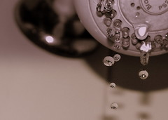 waterdrops (Fer Gregory) Tags: pictures camera city milan art water mxico mexicana de mexico drops interestingness code interesting agua friend icons flickr foto photographer with shot artistic photos background sony creative taken 8 cybershot myspace icon clip mexican gotas fotos fernando mexique gregory ccd 80 f828 mexicano sets camara con recent dsc comments comment groups megapixel fotografo tomadas coments hi5 codes sonydscf828 relevant freg dscf828 artisticas coment megapixeles fernandogregory fr3g flickrphotoaward cybershotdscf828 reg