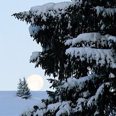 Goodnight Moon - by jurvetson