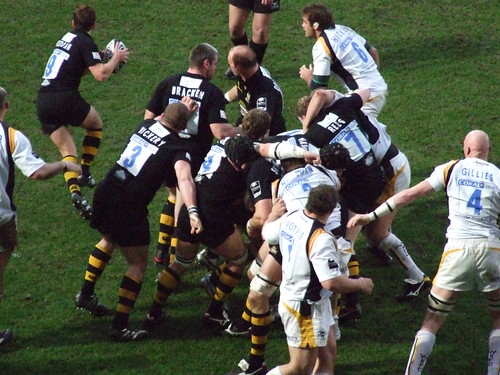 Wasps win the ball