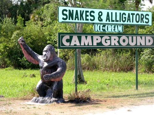 Snakes & Alligators Campground