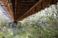 Sous le pont des Anglais (1876) (Bo No Bo) Tags: bridge trees cliff green d50 rust vert route arbres cables underside pont across falaise dessous rouille larunion reunionisland cbles pointdefuite 974 ledelarunion endessous lignesdefuite