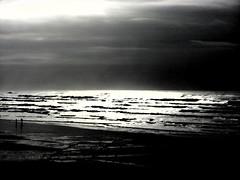Kalaloch Beach filtered....