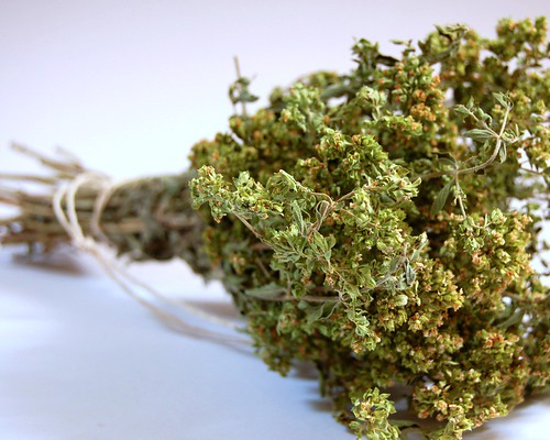 dried oregano© by haalo