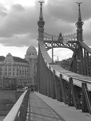 Szabadsag Bridge (Elin B) Tags: city bridge winter hungary budapest magyar ungarn easterneurope httpwwwnordictouchcouk