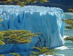 Perito Moreno Glacier - Los Glaciares National Park - Argentina ({ Planet Adventure }) Tags: holiday 20d ice southamerica argentina canon wow eos interesting bravo holidays canon20d ab unesco adv