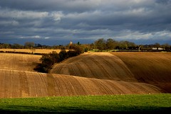 last of the sunshine (on velvet fields) (algo) Tags: england grass clouds photography topf50 bravo topv1111 chilterns topv999 fields topv3333 topv4444 blueribbonwinner magicdonkey outstandingshots abigfave colorphotoaward 200750plusfaves topvf100 arrewiglane