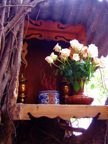cafe tree's altar