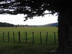 Oilver Land (KidGizmo) Tags: christmas newzealand hawkesbay awaawanui