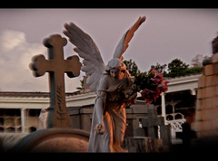She flies around (gustavosilent) Tags: cemeteries cemetery saint statue silent sony holy thumb h2 imortal cript