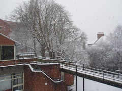 P2080311 (ash_beck) Tags: snow hampstead kingscollegelondon