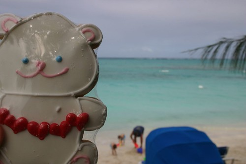 Cookie bear at the beach