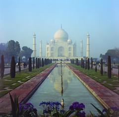 My Taj Mahal