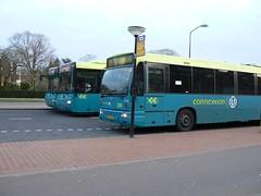 3 Connexxion bussen (gigawebs) Tags: man bus den busses alliance bussen connexxion b95 denoudsten 2496