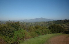 Mt. Diablo as seen from my Lafayette Reservoir hike