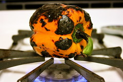 Roasting a Pepper