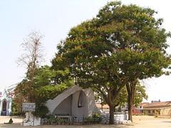 Catedral católica en Mysore (1)