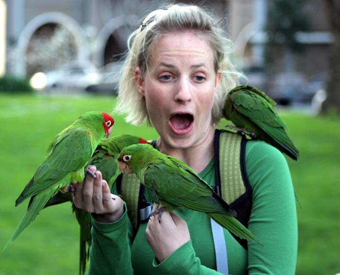 Parrots are full of surprises