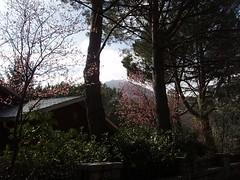 Imagen 225 (Prema Macarena  Miraflores, Madrid, Spain) Tags: madrid rural private casa rental villa miraflores prema macarena