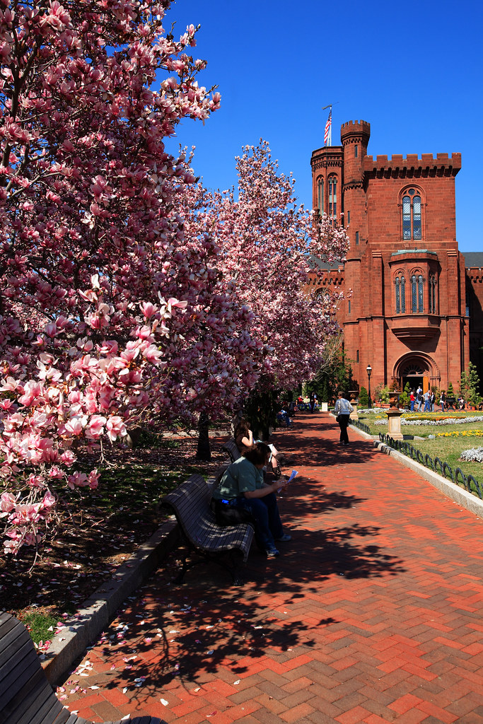 Smithsonian Castle, by ephian, Attribution-Noncommercial-No Derivative Works 2.0 Generic License