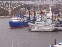 boats lk union
